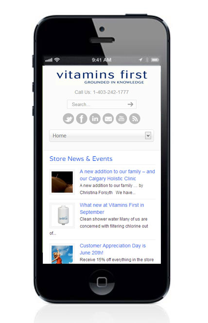 view website on your phone