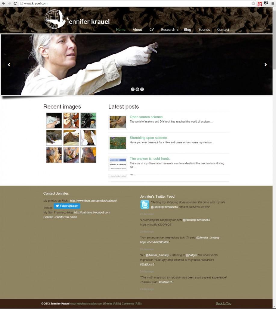 krauel-website-hompage